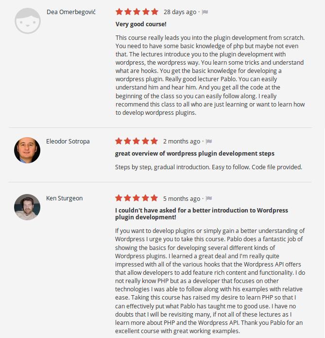 wordpress plugin development reviews