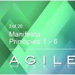 Manifesto Principles 1-6